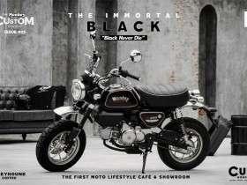 Monkey The Immortal Black Custom Edition 1 (1)