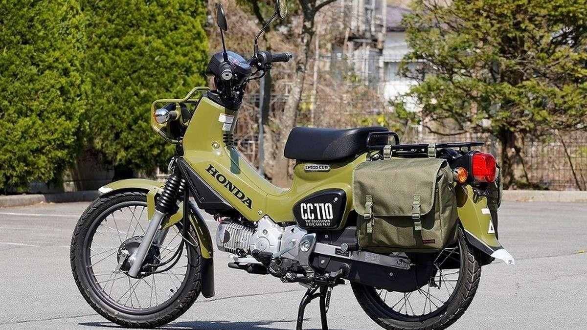 cub50