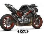 Exan-Carbon-Cap-Ovale-800x471-1